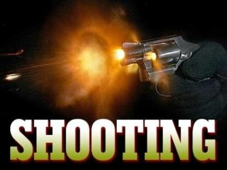 Ball Play Man Dies in Domestic Violence Shooting