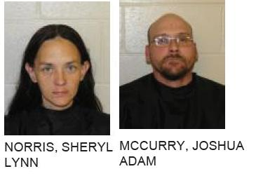 Silver Creek Couple Charged with Exploiting Elderly