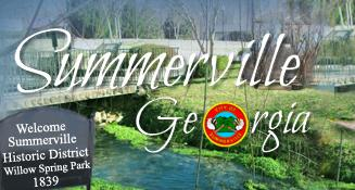 "Summerville Named ""Tree City USA"""