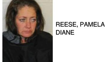 Rome Woman Found with Numerous Illegal Drugs