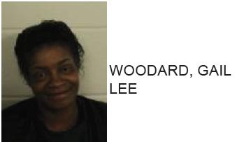 Rome Woman Arrested After Breaking Microwave