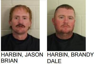 Brothers Arrested After Altercation in Cave Spring
