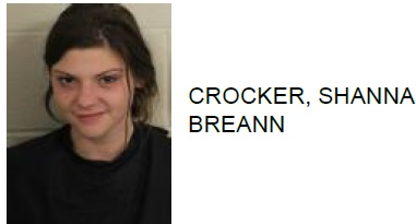 Adairsville Woman Charged with Battery