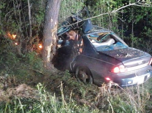 High speed chase that began in Polk County ends after suspect hits a tree in Alabama