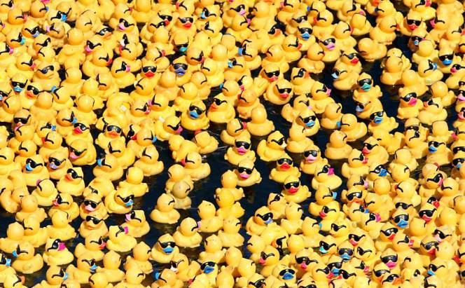 Duck Derby & Duck Dash raises more than $108,000