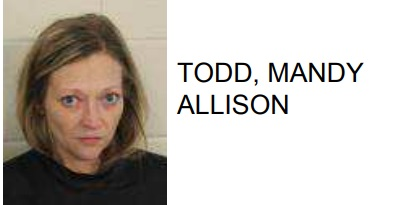Cedartown Woman Charged with Theft
