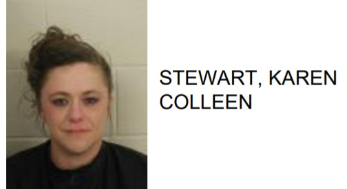 Rome Woman Arrested for Numerous Financial Card Thefts