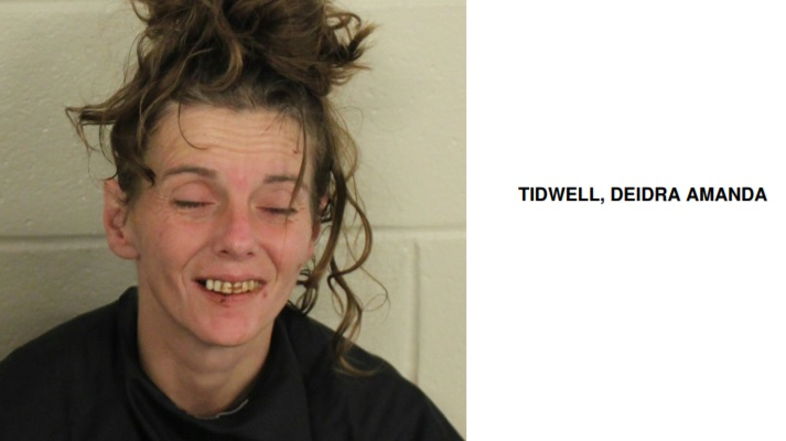 Lindale Woman Found with Meth