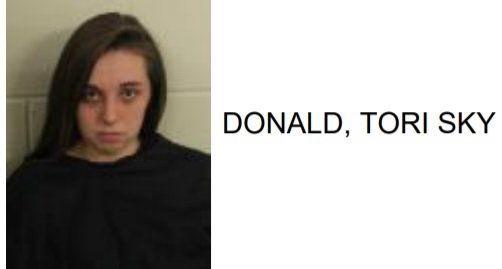 Lindale Teen Charged with Theft and Drug Possession
