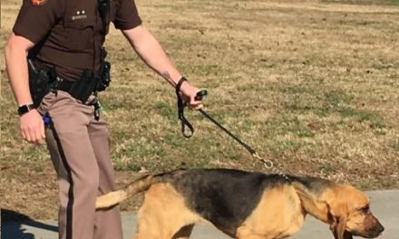 Polk County K9 Deputy Captures Wanted Man