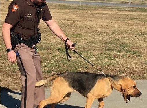 Polk County K9 Deputy Captures Wanted Man