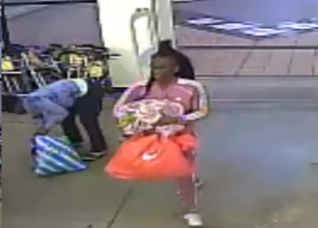 Police Seeking Pantie Thieves