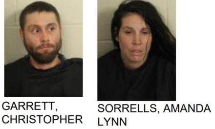Couple Arrested After Trespassing and Committing Theft
