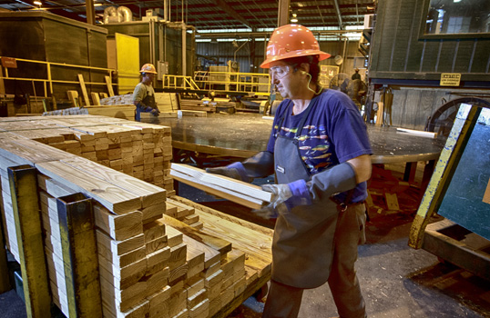 Rome Lumber Facility Investing $30 Million To Improve Efficiency And Enhance Product Quality