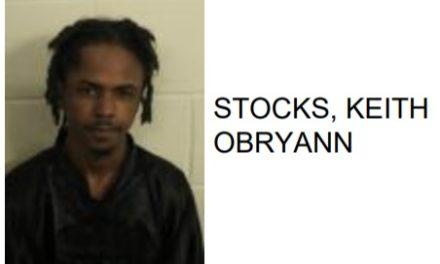 Rome Man Commits Numerous Burglaries, Thefts