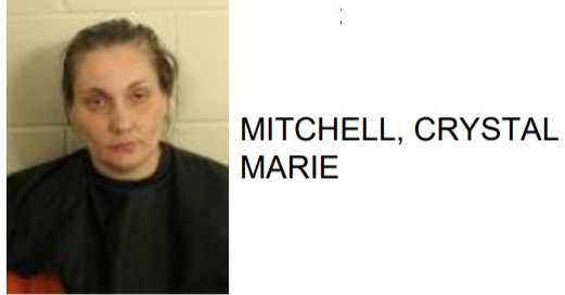 Rome Woman Found with Meth in Bra Inside Floyd County Jail