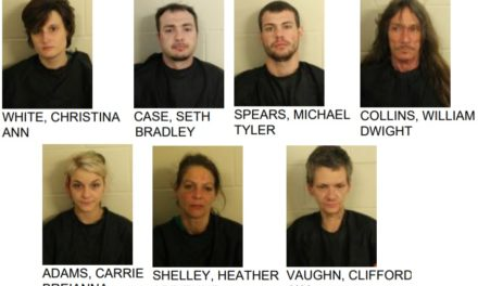 Rome-Floyd Drug Task Force Arrest Seven in Raid