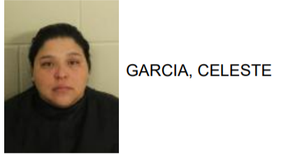 Rome Woman Jailed for Hitting Roommate