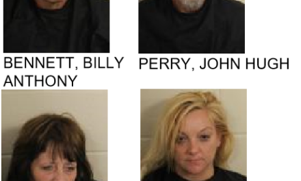 Four Arrest Made in Major Drug Bust in Shannon
