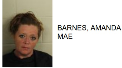 Trion Woman Steals Wallet at Rome Restaurant, Found with Drugs