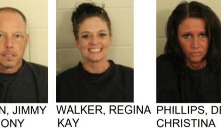 Three Arrested After Drug Task Force Raid in Cave Spring