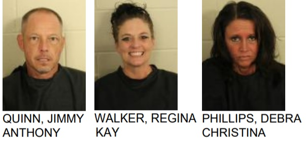 Three Arrested After Drug Task Force Raid in Cave Spring