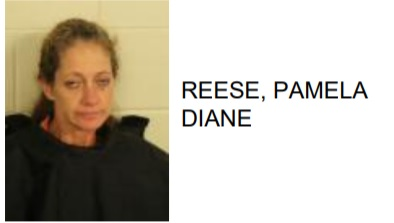 Shannon Woman Found with Meth During Welfare Check