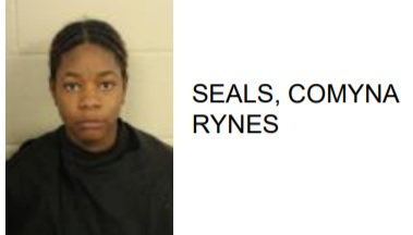 Memphis Woman Jailed for Hitting 2 Rome Children with a Car