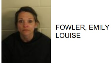 Rome Woman Jailed on Multiple Theft Charges