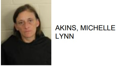 Rome Woman Jailed After Selling Meth to Police Informant
