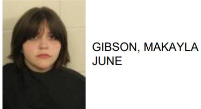 Adairsville Teen Found Shoplifting with Concealed Gun