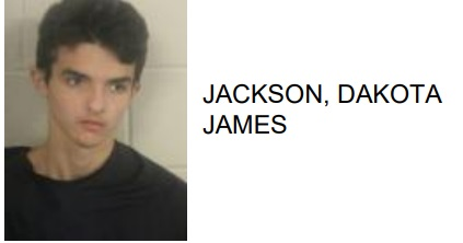 Rome Teen Charged with Felony Theft